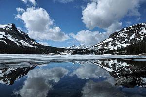 Yosemite national park, Californië van Pauline Paul