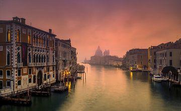 Mistige ochtend in Venetie van