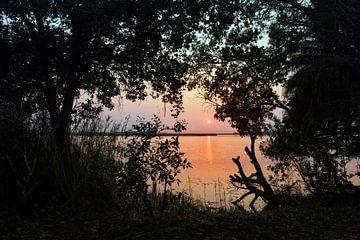 Oranje zonsopgangboven mistige graslanden Okavango Delta, Botswana, Afrika van Tjeerd Kruse