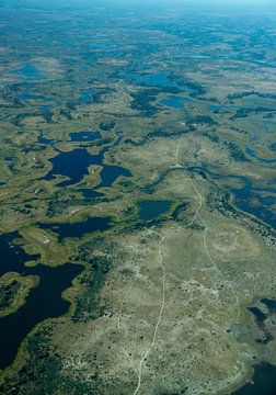 Luchtfoto van de Okavango delta van Christel Nouwens- Lambers