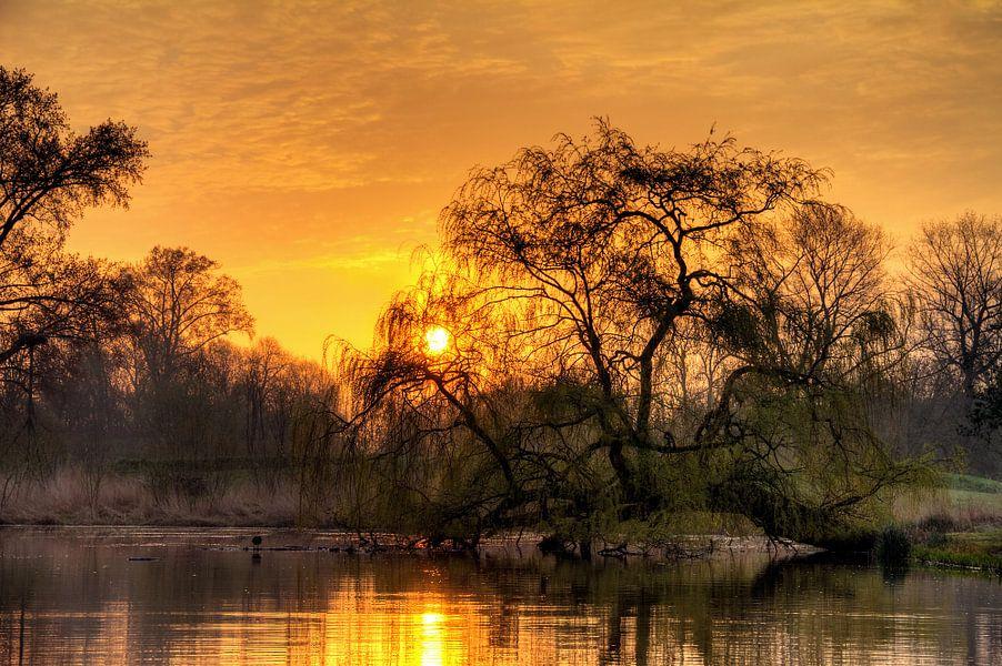 Vondelpark zonsopkomst van Dennis van de Water