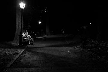 Verliefd stel op een bankje in Central Park in New York City van