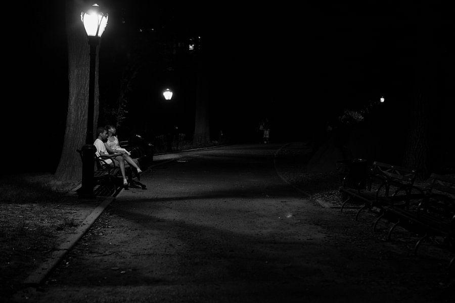 Verliefd stel op een bankje in Central Park in New York City van Wout Kok