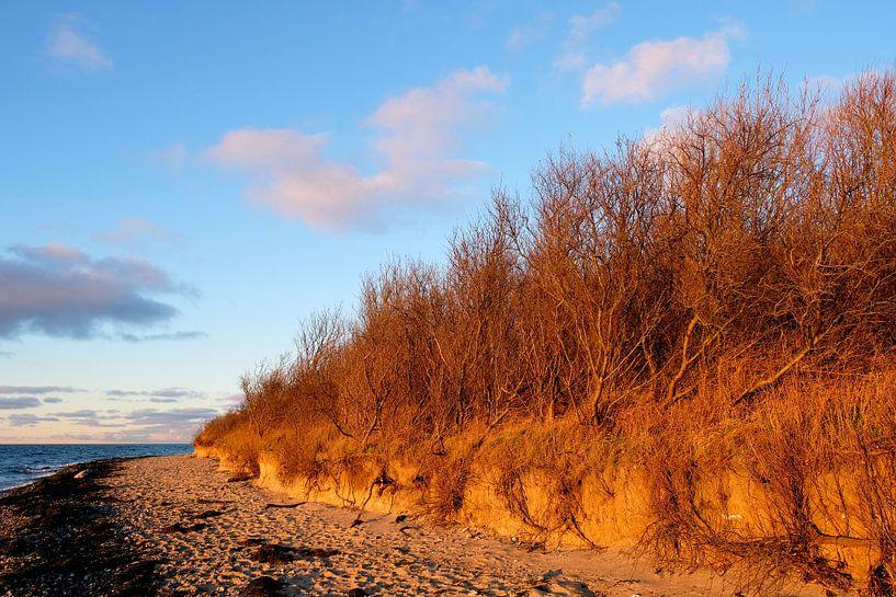 Traumküste Rügens von Ostsee Bilder