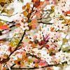 Bloesem van Andreas Wemmje thumbnail