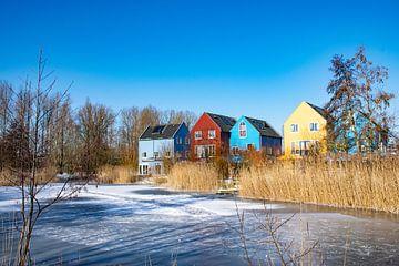 Scandinavian dreaming van Ingrid de Vos - Boom