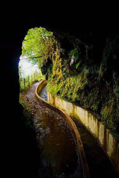 Levada do Furado, Madeira van Michel van Kooten