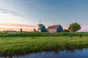 Mühle in den Niederlanden von Kevin Nugter