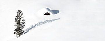 Eenzame hut en een boom in de sneeuw van Frank Herrmann