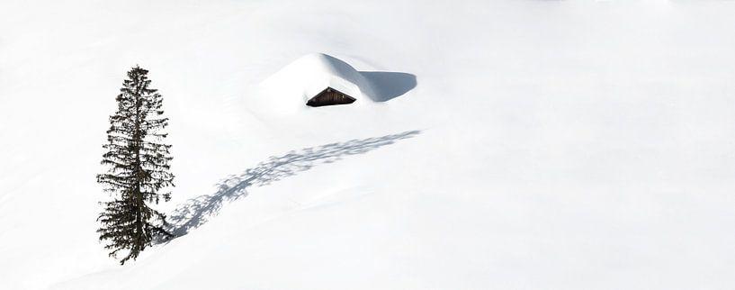 Cabane isolée et un arbre dans la neige sur Frank Herrmann