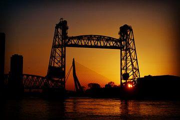 Op z'n Rotterdamst von Butterley Photography