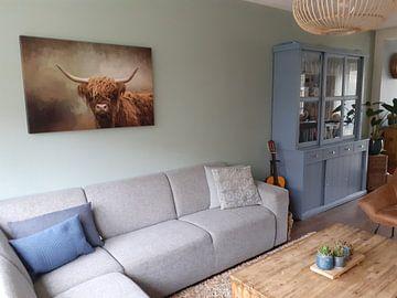 Kundenfoto: Schottischer Hochlandbewohner von Diana van Tankeren