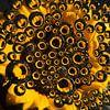 zonnebloem door druppels heen (vierkant) van Marjolijn van den Berg thumbnail