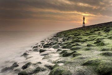 Leuchtturm von Breskens von Niek Goossen
