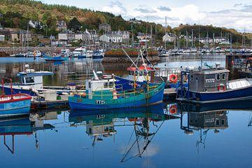 Harbor of Tabbert von Marcel van den Hoven