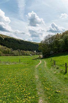 Groen wandelpad van Danny Motshagen
