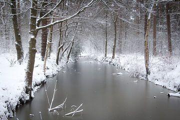 Bäume und Äste mit Schnee entlang verträumt gefrorenem Wasser im Wald von Margriet Pflug