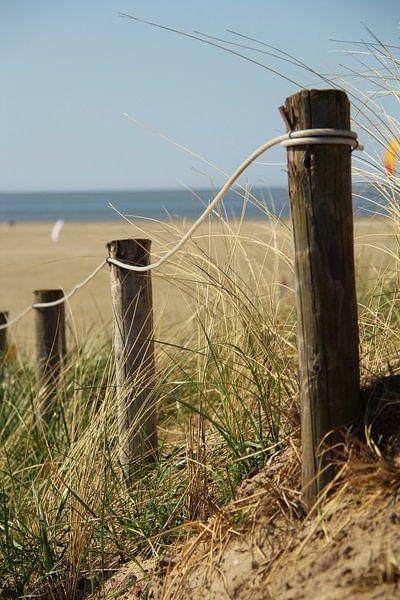 Strandopgang Texel van Marieke Borst