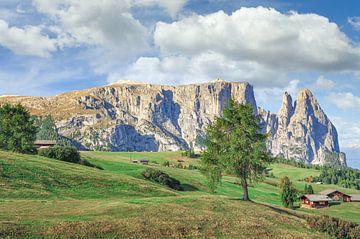 Alpe di Siusi en Sciliar van Peter Eckert