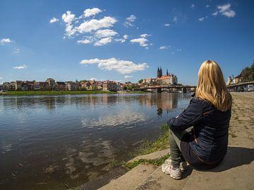 Jeune femme regardant Meißen en Saxe sur Animaflora PicsStock