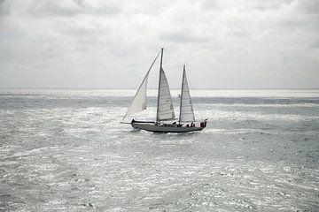 Zeilboot van Wendy Bierings