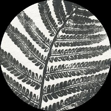 Tropisch blad (gezien bij vtwonen)