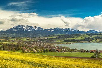 Sempacher See von Ilya Korzelius