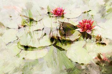 Roze waterlelies van Paula van den Akker