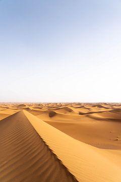 Sahara °8 van Jesse Barendregt