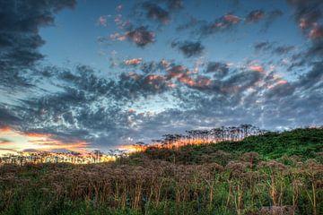 landschap - zonsondergang van Nooraldeen Sabah