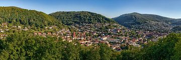 Eberbach Panorama van Uwe Ulrich Grün