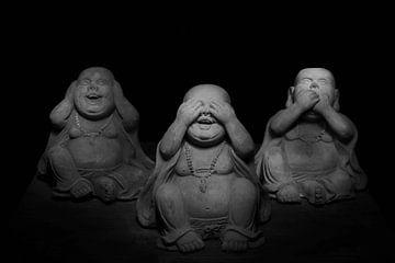 Horen, Zien en Zwijgen van Ratna Bosch
