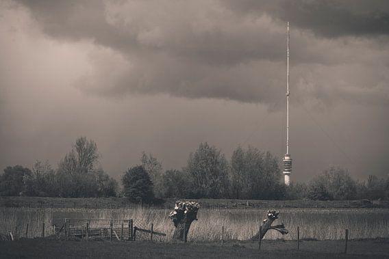 Dreigende lucht boven de Gerbrandytoren in IJsselstein van Kees van der Rest