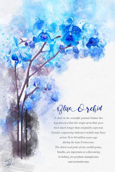 Blaue Orchidee von Theodor Decker