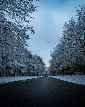 De oprijlaan in de sneeuw van Wesley Kole