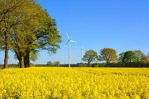 Yellow landscapes van Gisela Scheffbuch