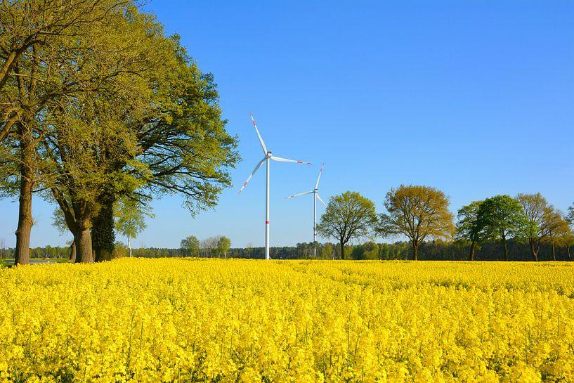 Duitsland bloeit geel van Gisela Scheffbuch