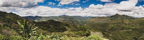 Colombiaanse Andes von Ronne Vinkx