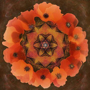Mandala - klaproos van Christine Nöhmeier