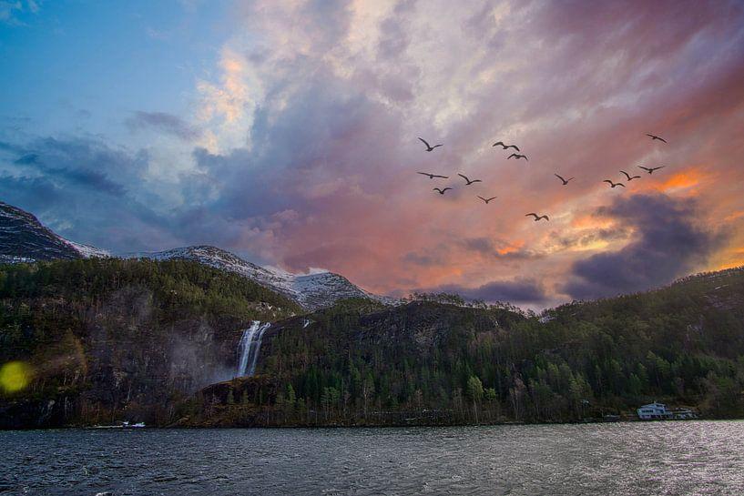 De fjorden van Noorwegen van Joran Quinten