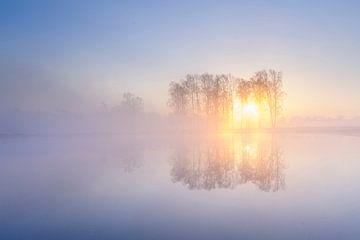 Sunburst von Arjan Keers