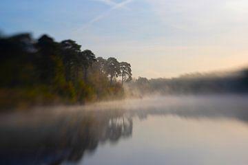 weerspiegeling in de ochtend mist von Ester Besuijen