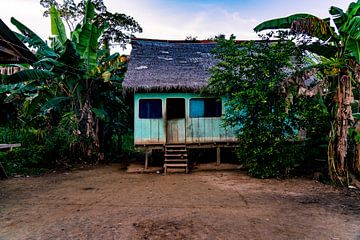 Traditioneel blauw huisje in de Amazone jungle in Peru, Zuid-Amerika van John Ozguc