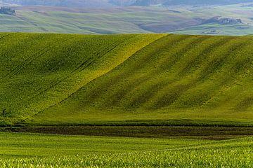 Glooiende toscaanse heuvels van Guy Lambrechts