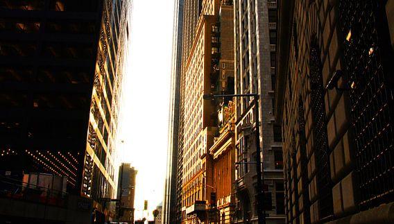 New York Treasury