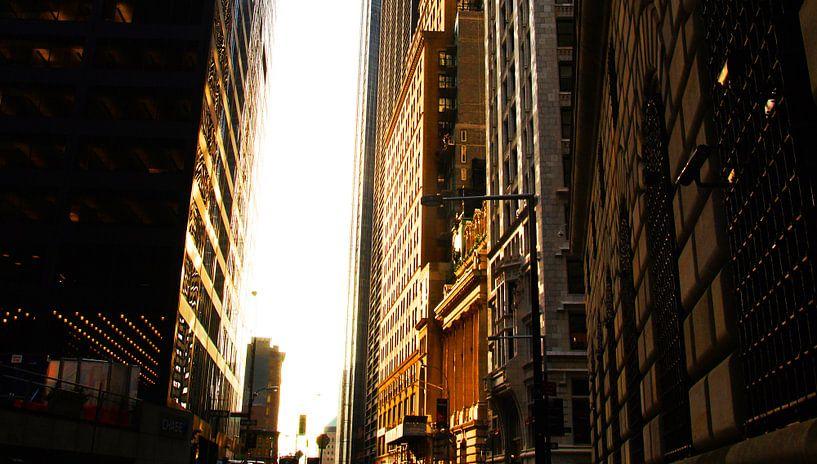 New York Treasury van Michiel Heuveling
