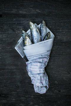 La pêche dans le journal sur Studio Stiep