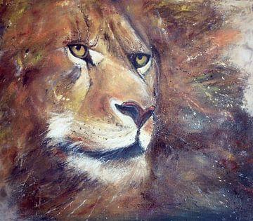 Lion watching... van