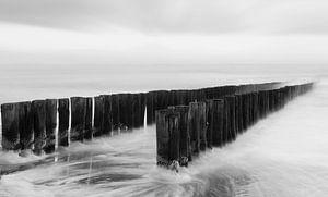 Strandpaaltjes in zwart-wit