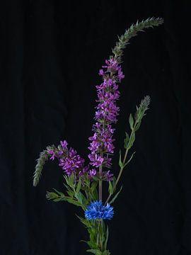 Blumen #7922